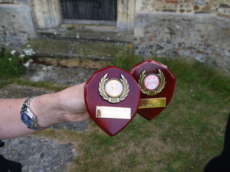Two of the dance shields that were awarded.